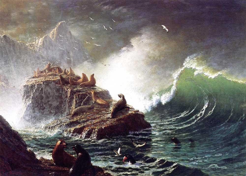 Albert Bierstadt Farallon Adasında Foklar