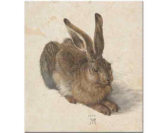 Albrecht Dürer, Genç Tavşan