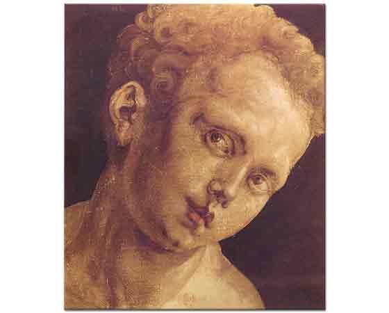 Albrecht Dürer, Sağa Dönük Çocuk Kafası
