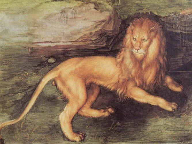 Albrecht Dürer Aslan tablosu