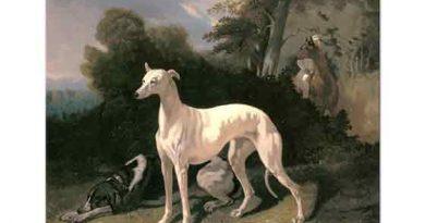 Alfred de Dreux Geniş Manzarada Tazı