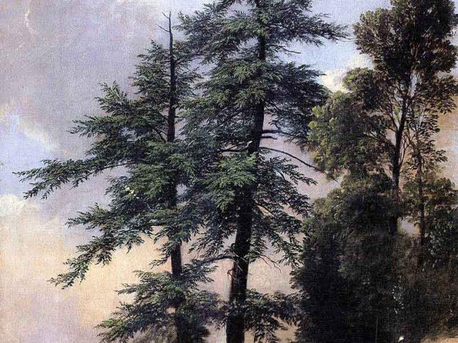 Asher Durand Doğa Çalışması Ağaçlar