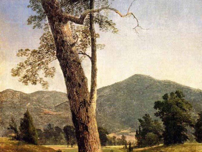 Asher Durand Ağaçlı Manzara tablosu