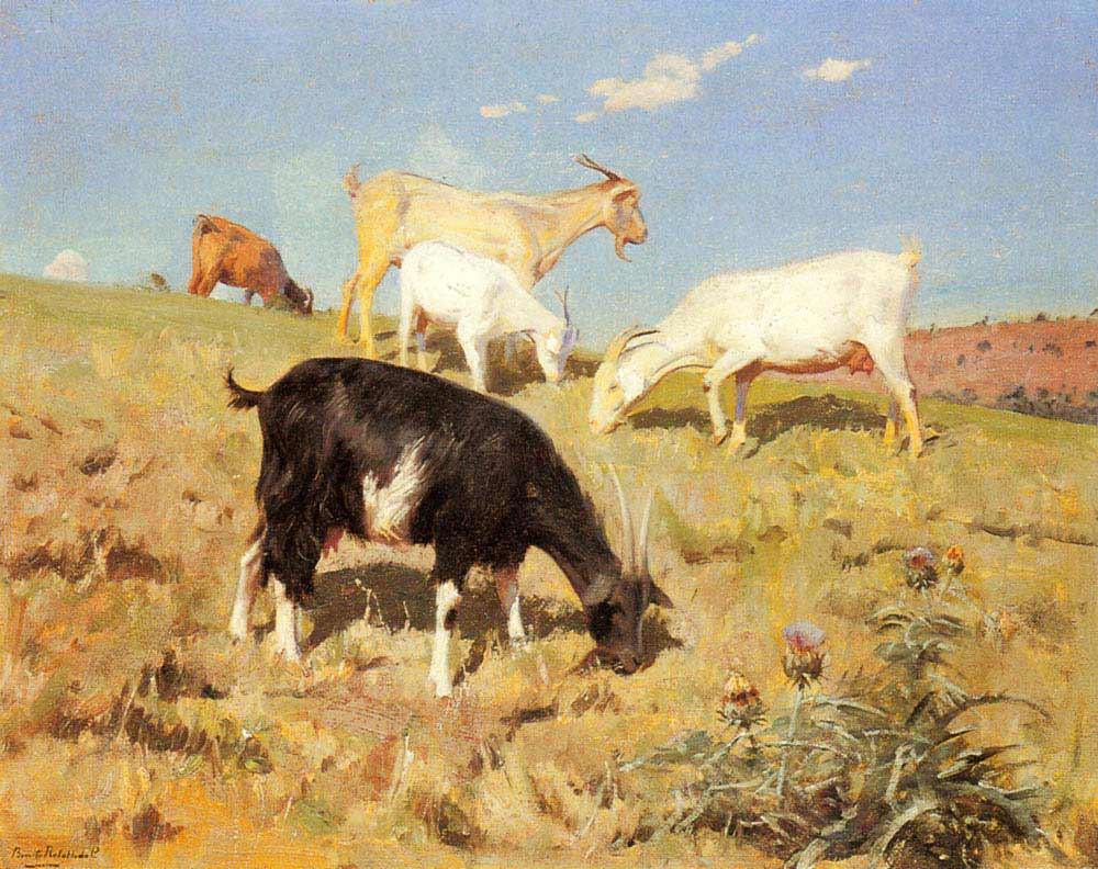Benito Rebolledo Correa Otlayan Keçiler