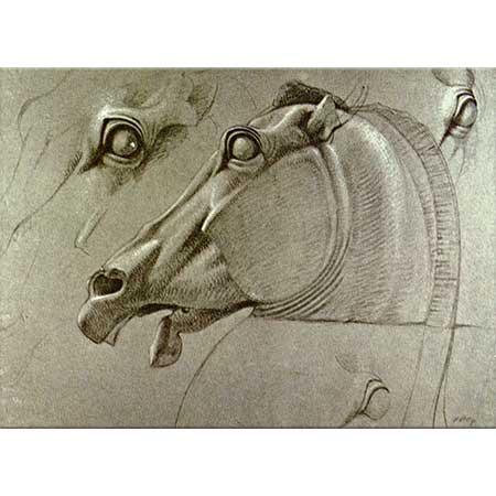 Benjamin Robert Haydon Selen Atının Başı