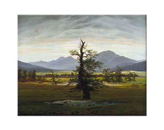 Caspar David Friedrich Yanlız Ağaç