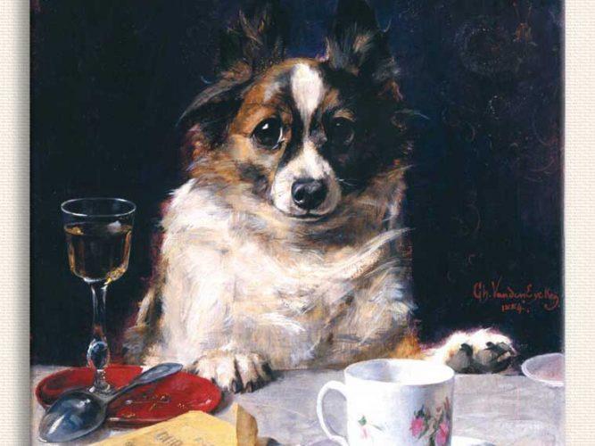 Charles van den Eycken içebilir miyim