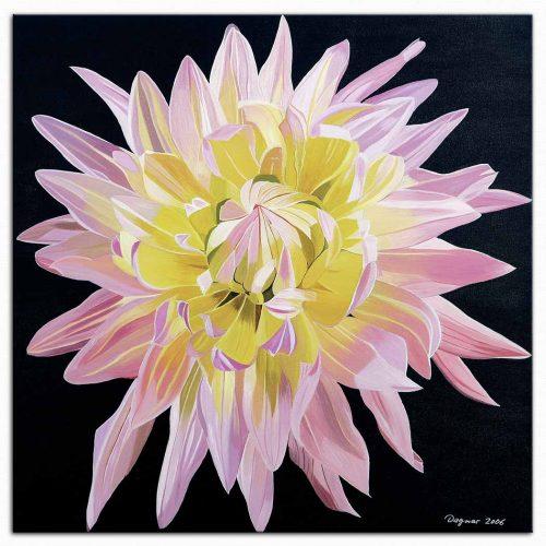 Dagmar Göğdün Flora 01