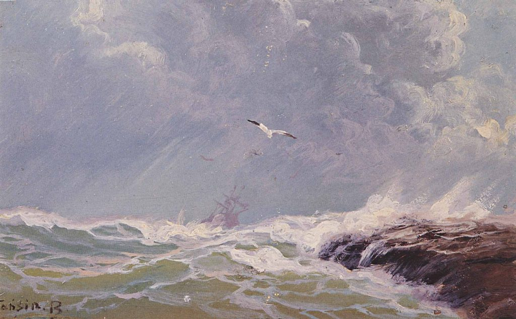 Diyarbakırlı Tahsin Fırtınalı Deniz