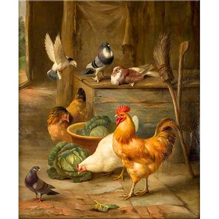 Edgar Hunt Yavru Horoz Tavuk ve Civcivler