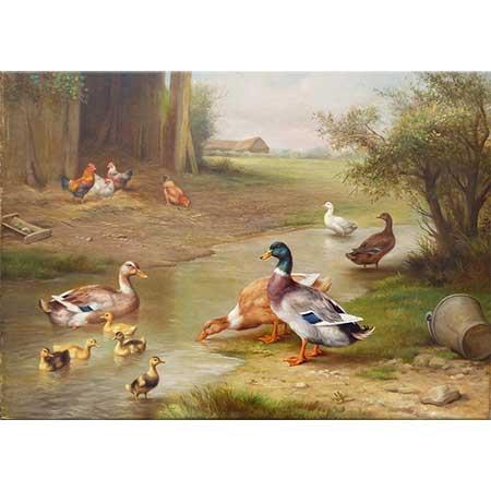 Edgar Hunt Tavuklar Ördekler ve Yavruları