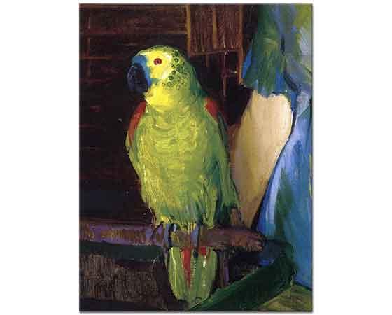 George Wesley Bellows Papağan