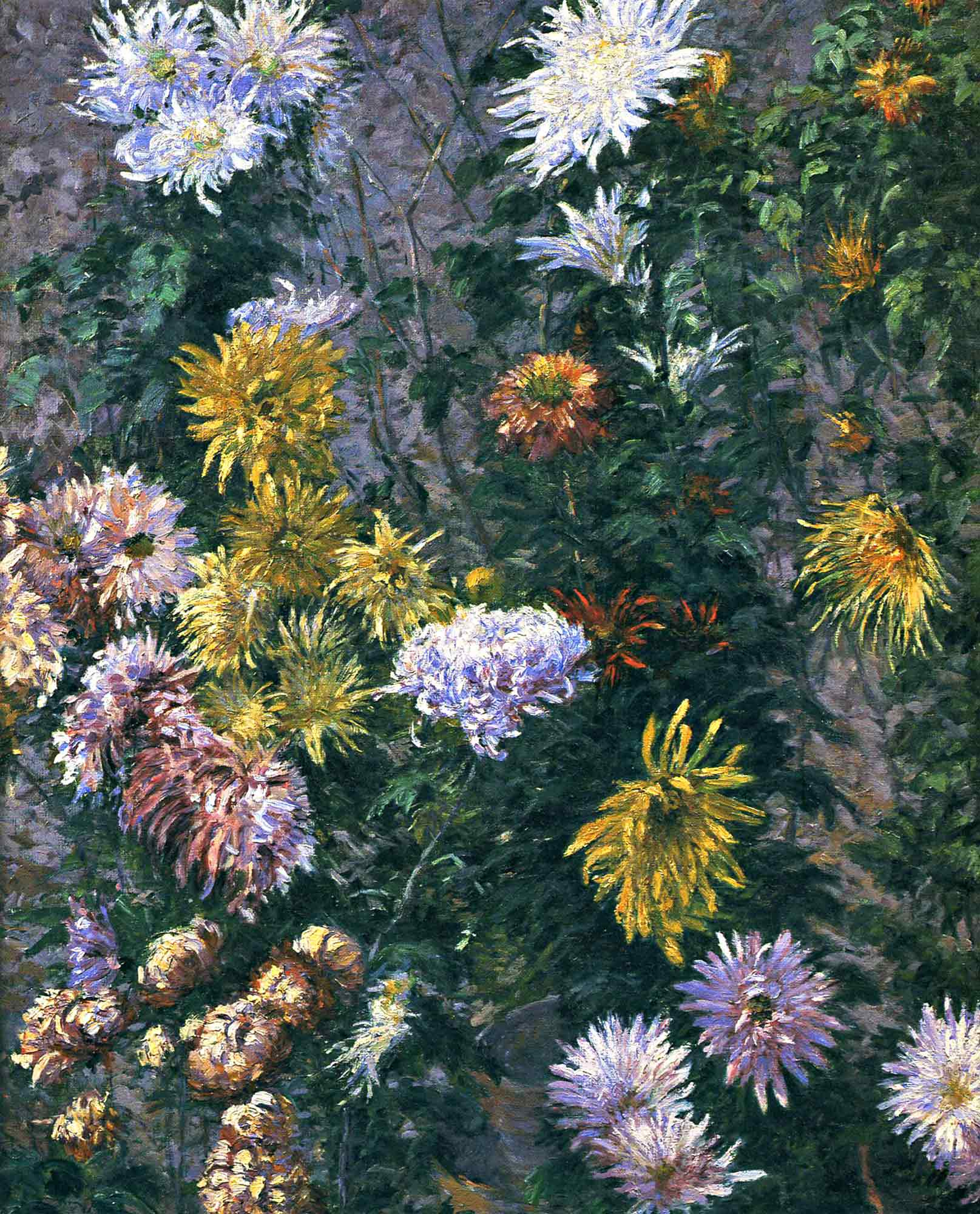 Gustave Caillebotte Beyaz ve Sarı Krizantemler