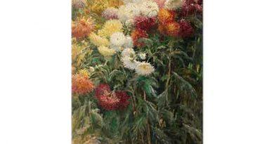 Gustave Caillebotte Krizantemler