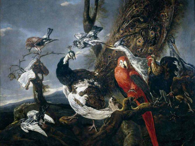 Jan Fyt Kuş Konseri tablosu
