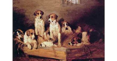 John Emms Fox ve Terrierler Kulübelerinde