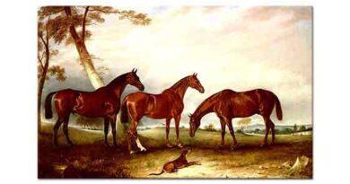 John Ferneley Üç Av Atı ve Köpek