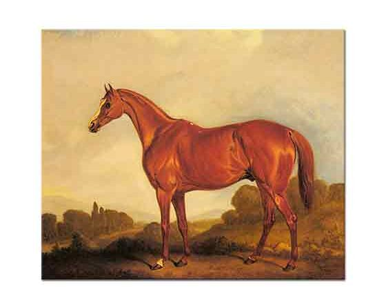 John Ferneley Yarış Atı Harkaway
