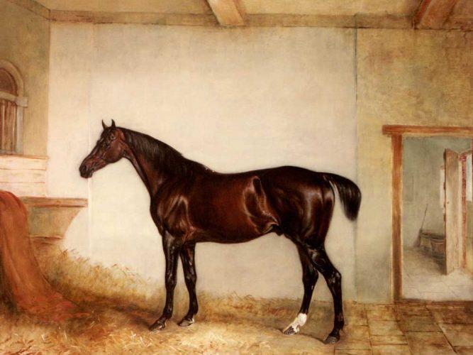 John Ferneley Av Atı