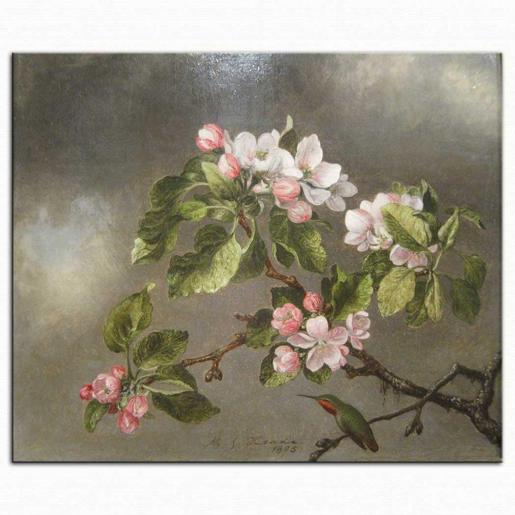 Martin Johnson Heade Elma çiçekleri