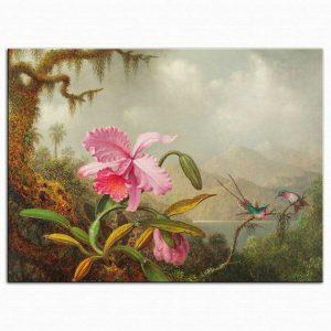 Martin Johnson Heade Orkide ve Kalibri