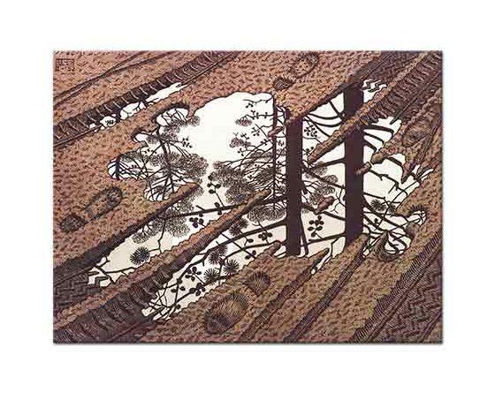 Maurits Cornelis Escher Su Birikintisi