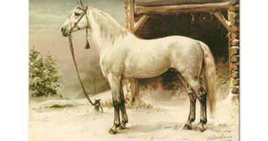 Otto Eerelman Beyaz Atın ihtişamı