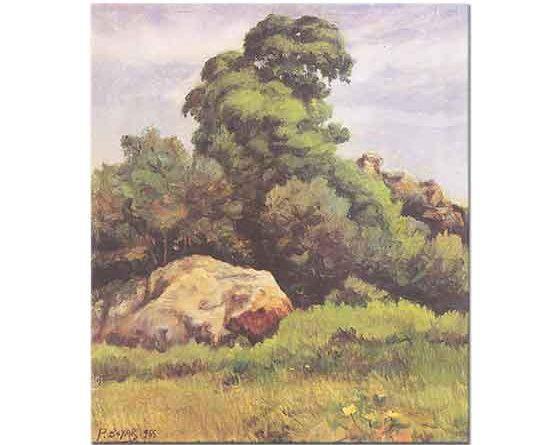 Pertev Boyar Ağaç ve Kayalar