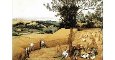 Pieter Bruegel Hasat