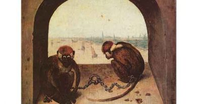 Pieter Bruegel iki Maymun
