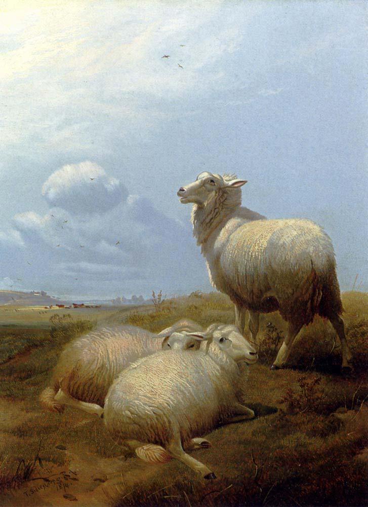 Thomas Sidney Cooper Otlakta Koyunlar
