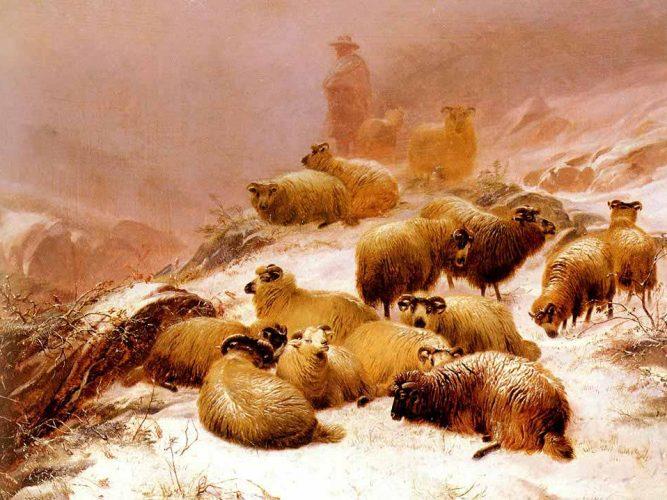 Thomas Sidney Cooper Üşüyen Koyunlar