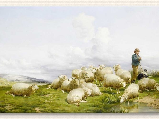 Thomas Sidney Cooper Koyun ile Çoban