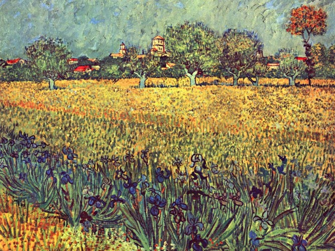 Vincent Willem van Gogh Arles'e Bakış ve Süsenler