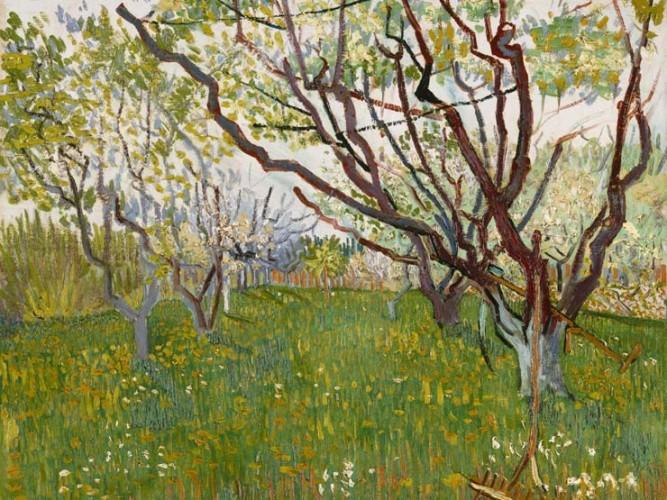 Vincent Willem van Gogh Meyve Çiçekleri