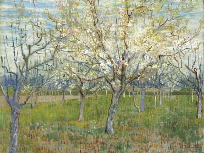 Vincent Willem van Gogh Çiçek Açmış Meyve Bahçesi