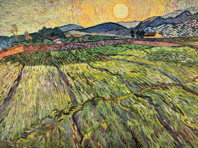 Vincent Willem van Gogh Çiçeklenmiş Tarlalar