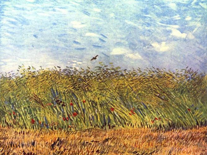 Vincent Willem van Gogh Tarla Kuşu ve Tarla