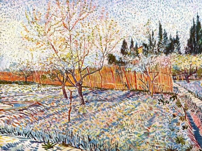 Vincent Willem van Gogh Baharda Sebze Bahçesi