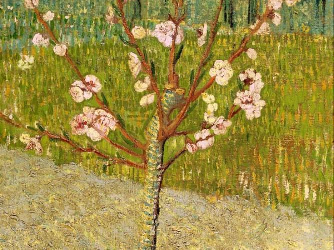 Vincent Willem van Gogh Çiçekli Şeftali Ağacı