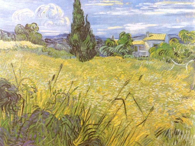 Vincent Willem van Gogh Buğday Tarlası ve Selviler