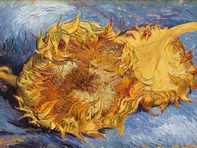 Vincent Willem van Gogh Ayçiçekleri