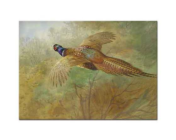 Archibald Thorburn Uçan Sülün