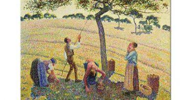 Camille Pissarro Elma Toplayanlar