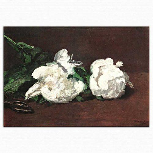 Edouard Manet Beyaz Manolyalar