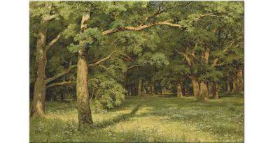 Ivan Shishkin Orman Temizliği