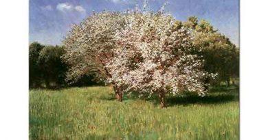 Pal Szinyei Merse Meyve Ağacı
