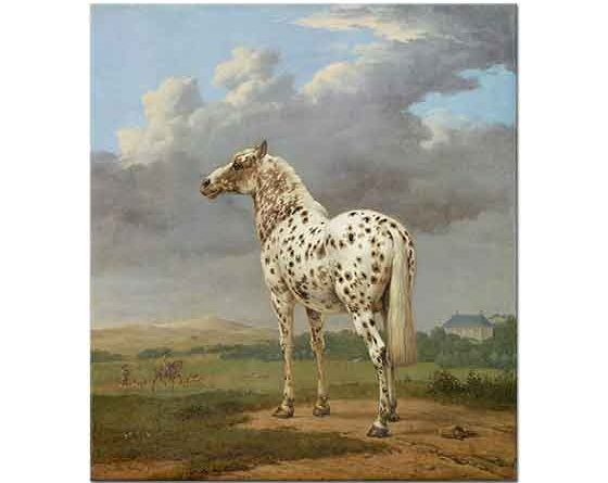 Paulus Potter Benekli At