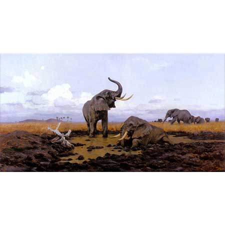 Friedrich Wilhelm Kuhnert Gün doğumunda Filler