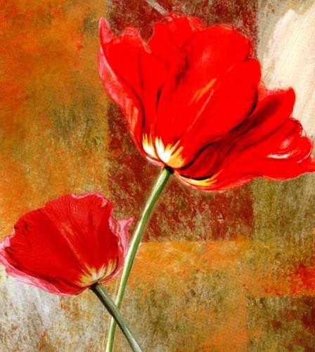 Kırmızı Gelincik 03